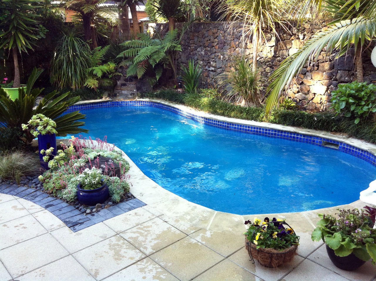 26 swimming pool builders auckland decor23 for Swimming pool builders